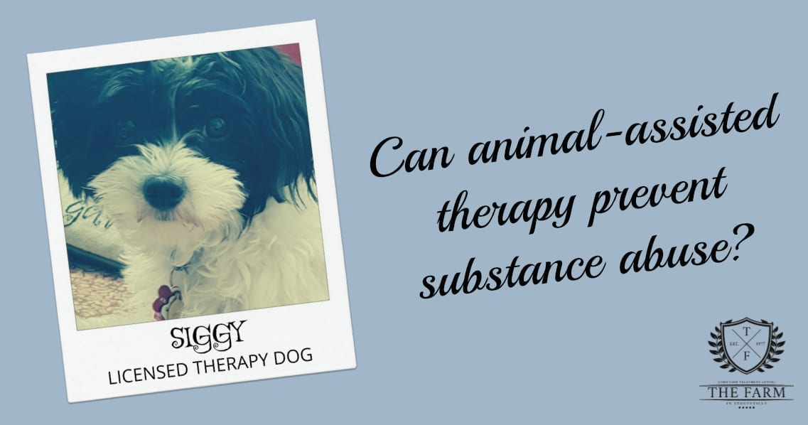 CAN ANIMAL-ASSISTED THERAPY PREVENT SUBSTANCE ABUSE